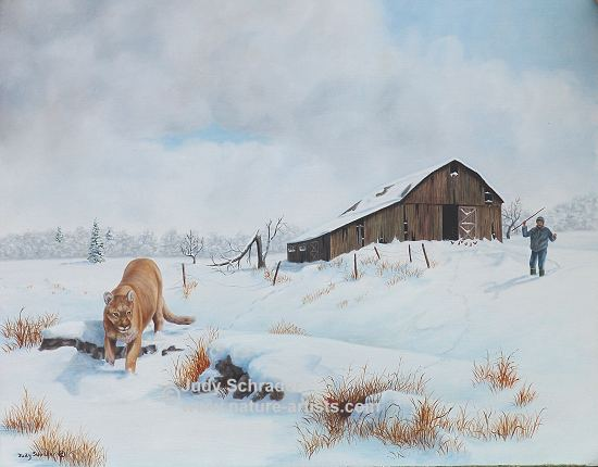 Oil Painting of a cougar stalking a chicken by Judy Schrader