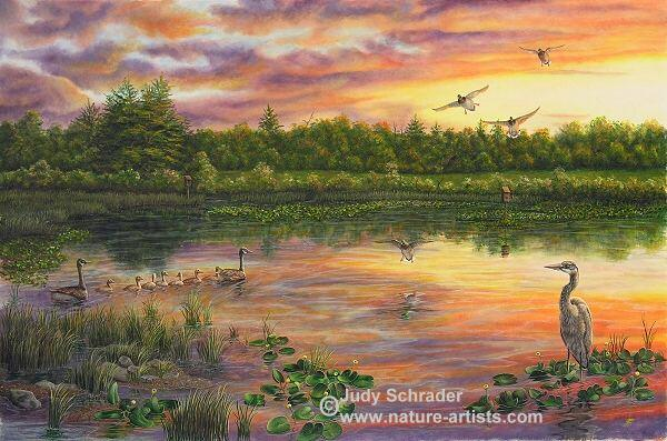 Oil Painting of Ackley Swamp in Warren County, PA by Judy Schrader