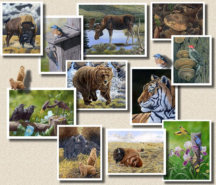 Wildlife paintings and Nature Art by Marilyn Marsh and Judy Schrader