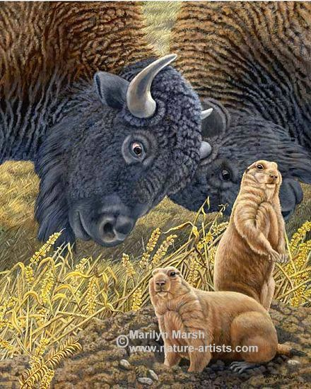 Nature Art, Nature Paintings, Wildlife Art, Wildlife Paintings, Original Acrylic Painting of a couple buffalo and prairie dogs by Marilyn Marsh