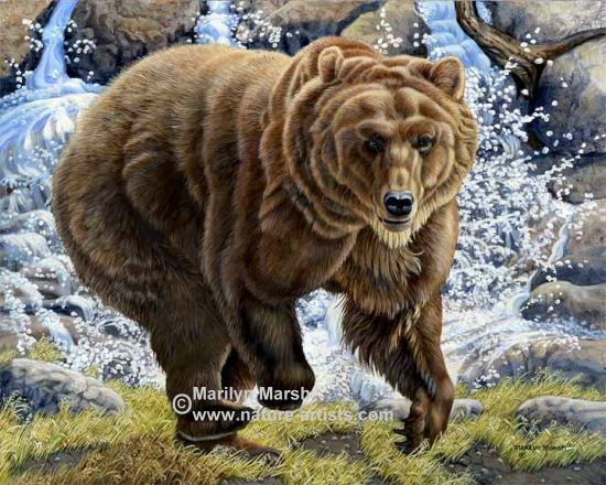 Nature Art, Nature Paintings, Wildlife Art, Wildlife Paintings, Original Acrylic Painting of a big old Grizzly Bear by Marilyn Marsh