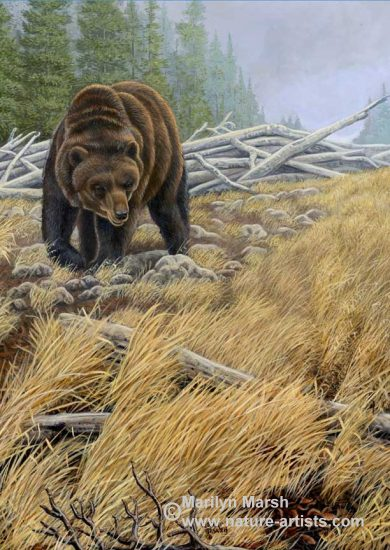 Nature Art, Nature Paintings, Wildlife Art, Wildlife Paintings, Original Acrylic Painting of a big old Grizzly Bear walking in a field by Marilyn Marsh