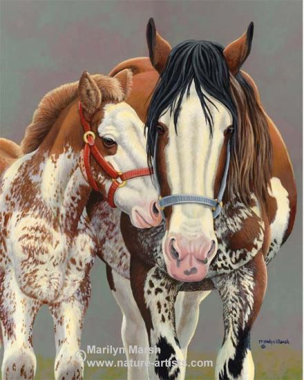 Acrylic Painting of a Clydesdale Mare on Foal by Marilyn Marsh