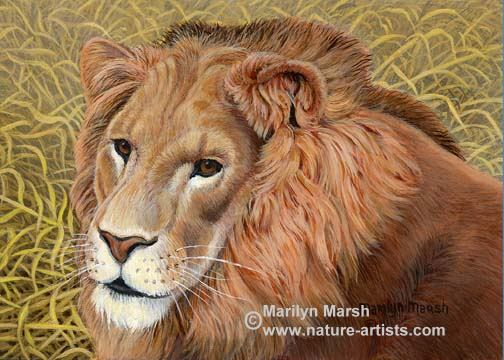 Acrylic Painting of a tiger cub ~Squeakin By~ by Marilyn Marsh