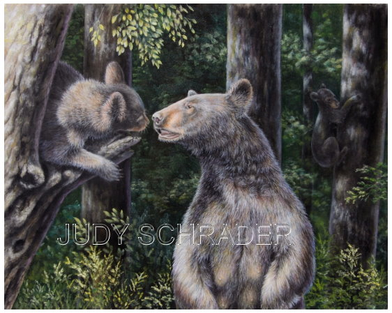 Original Oil Painting of a black bear with two cubs by Judy Schrader. Wildlife and Nature Art