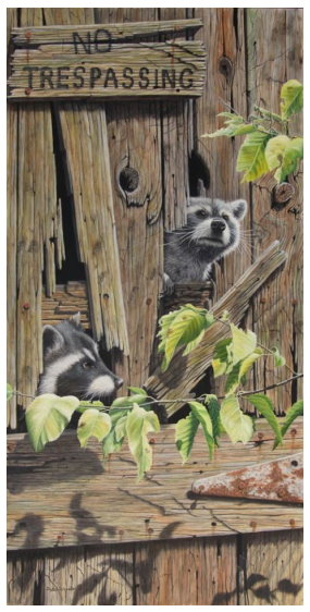 Original Oil Painting of two raccoons by Judy Schrader