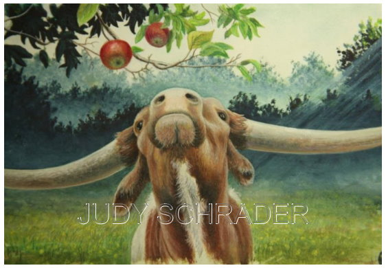 Miniature Painting,Water color Painting of a Texas Longhorn looking at an apple by Judy Schrader