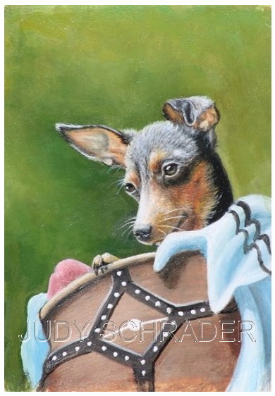 Miniature Painting, Oil Painting of a miniature pinscher by Judy Schrader